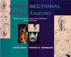 Cross-Sectional Human Anatomy