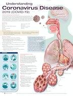 Understanding Coronavirus Disease 2019 (COVID-19)