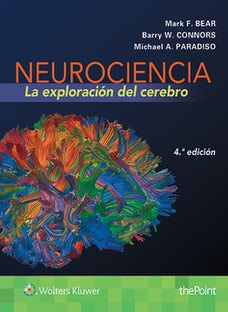 Neurociencia. La exploración del cerebro